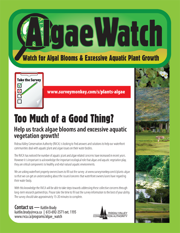 AlgaeWatch